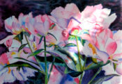 Anita Jamieson's watercolor Basking Peonies