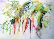 Anita Jamieson's watercolor Carrots
