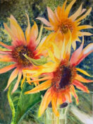 Anita Jamieson's watercolor Sunny Sunflowers