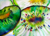 Anita Jamieson's watercolor Kiwi