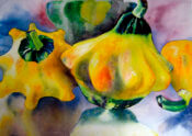 Anita Jamieson's watercolor Patty Pan Squash