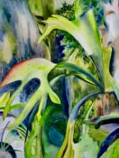Anita Jamieson's watercolor Rainforest