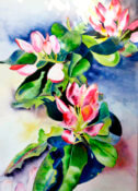 Anita Jamieson's watercolor Rhododendrons