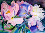 Anita Jamieson's watercolor Wedding Peonies